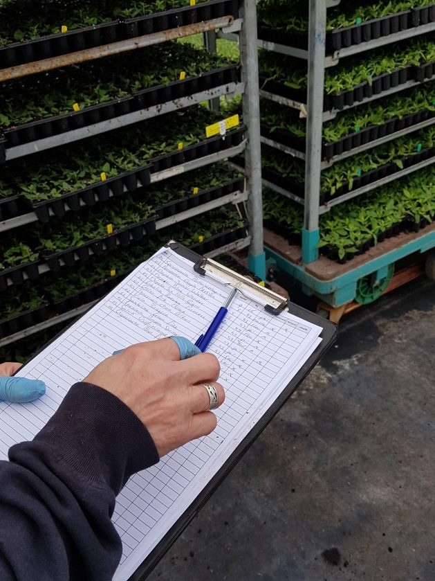 Paper based tracking of plants in horticulture